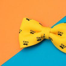 Colton Yellow Classic Bow Tie