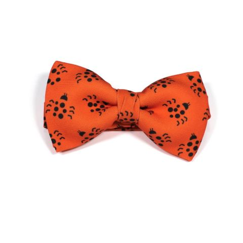 Insect Ladybird Classic Bow Tie