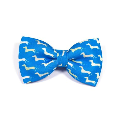Dogs Classic Bow Tie by Veronica Perona